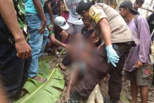 Diduga terjerat tali Sapi, Lelaki Paruh Baya ditemukan Tewas Dipersawahan