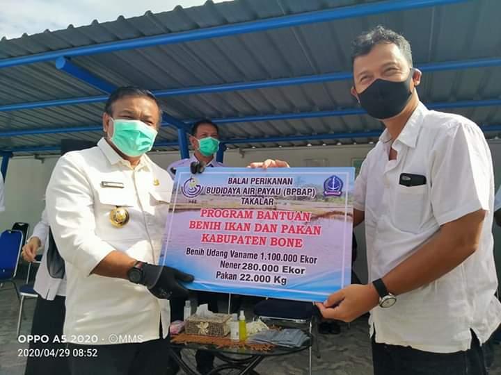 BPBAP Takalar Serahkan Bantuan Bibit Kepada Delapan Kelompok Budidaya di Kabupaten Bone