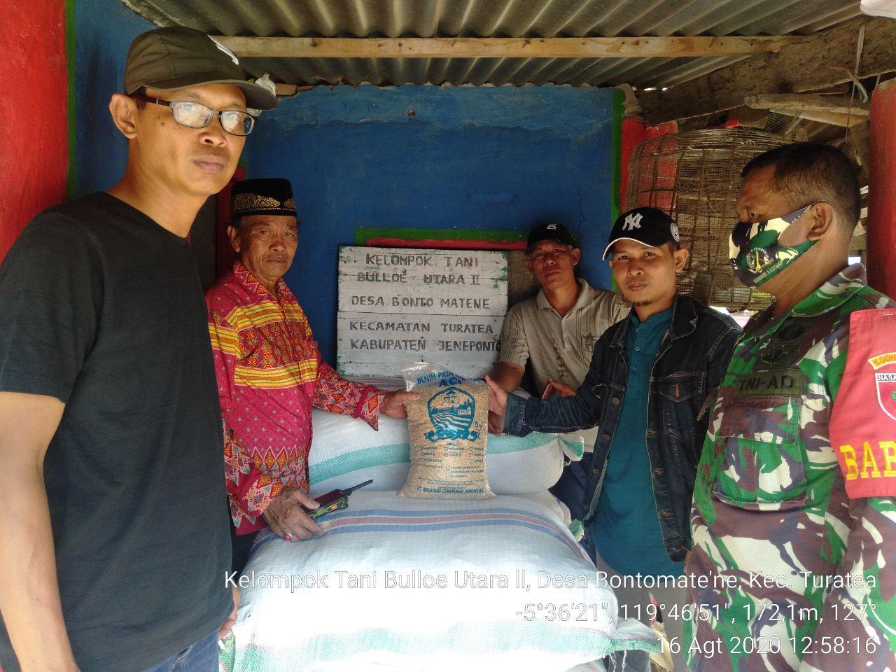 Seksi Tanaman Pangan Dinas Pertanian Jeneponto Dampingi Penyaluran Bibit Padi di Turatea