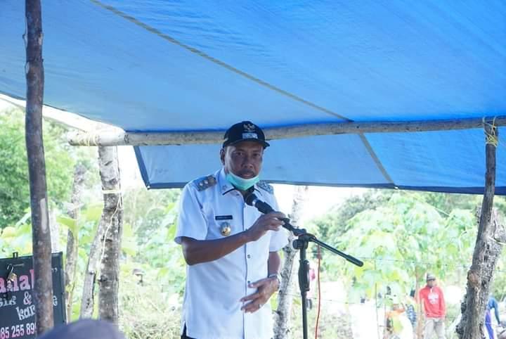Hadiri Panen Raya, Wakil Bupati Bone Berharap Tanaman Jahe Terus di Kembangkan