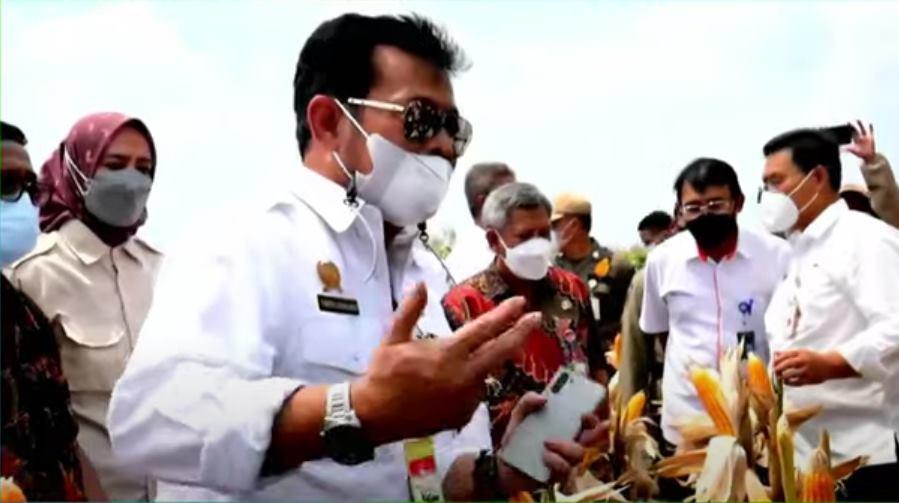 Panen Raya Jagung Nusantara, Mentan: Budidayanya sudah bagus, Pasca Panen Harus di Perkuat