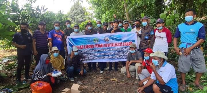 Sejumlah Petani Kakao di Kolaka Ikuti Sekolah Lapang Petani Revitalisasi Kakao